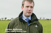 Video: Managing turnout to grass