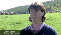 Video: Managing pre-lambing ewe nutrition