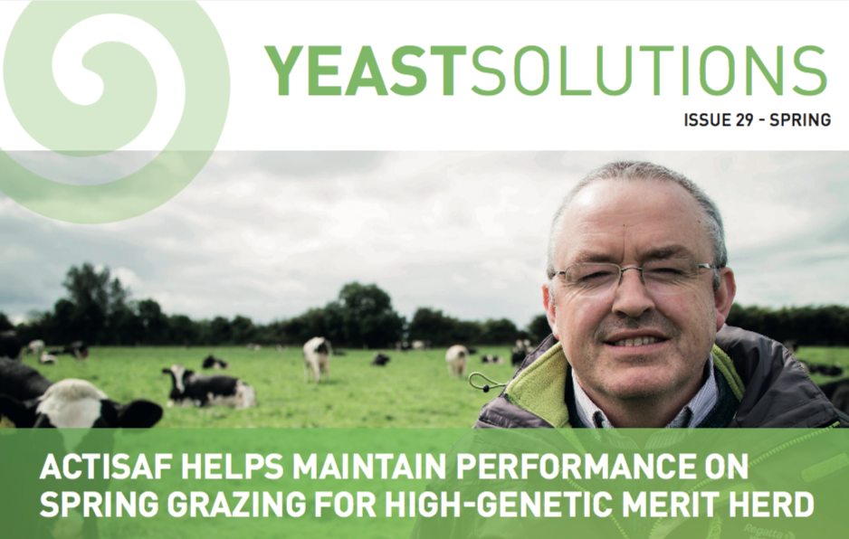 Spring Yeast Solutions 2018