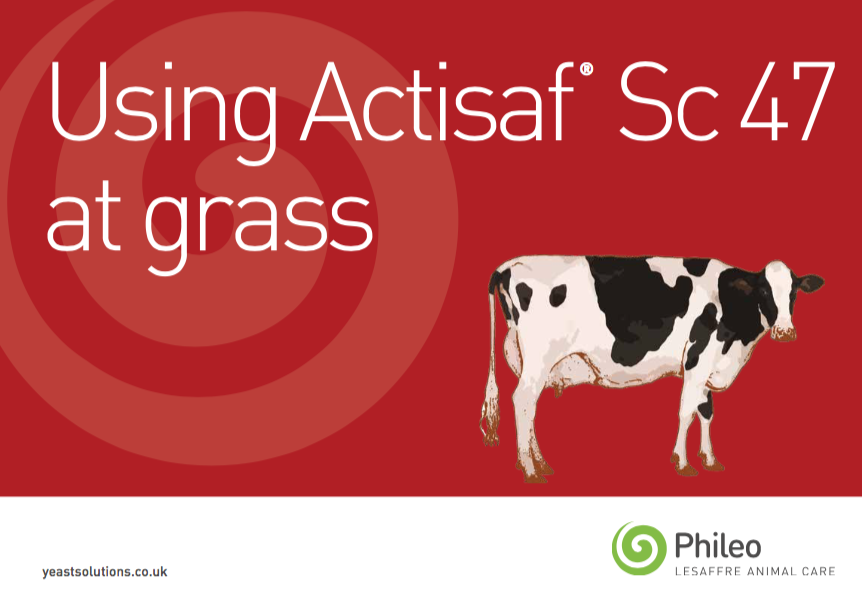 Using Actisaf at grass